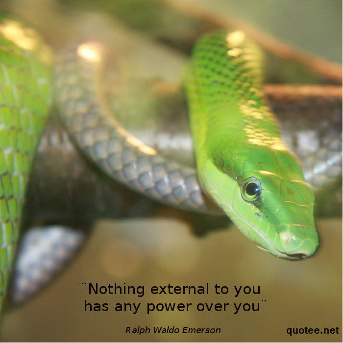 quot nothing external to you has any power over you