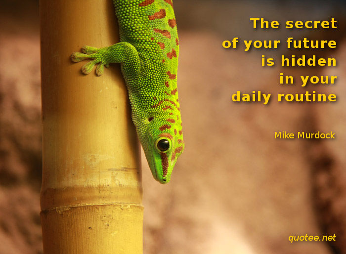 The secret of your future is hidden in your daily routine - quote Mike Murdock
